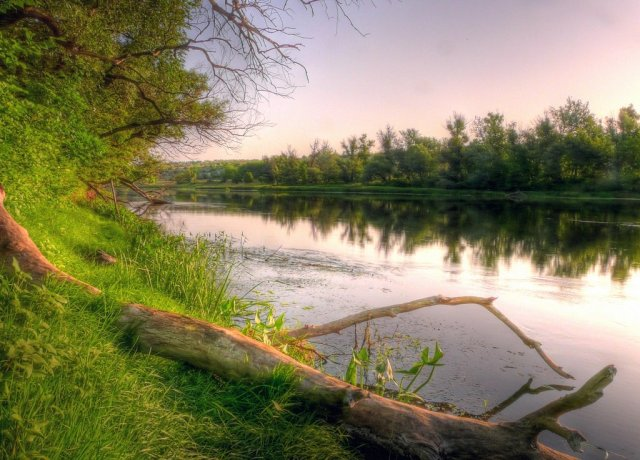 SD River